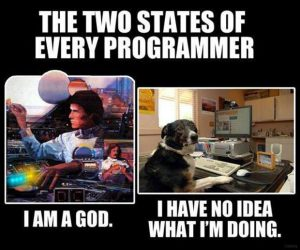 The two states of every programmer meme